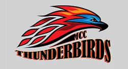Mesa Community College Thunderbirds